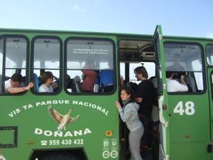 En los todoterreno por Doñana